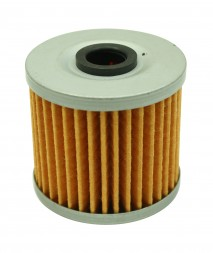 High Volume Fuel Filter Element (Replacement) for 25-200BK
